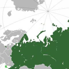 La Russia fuori dalla rete web: il sogno dell'autarchia digitale del Cremlino