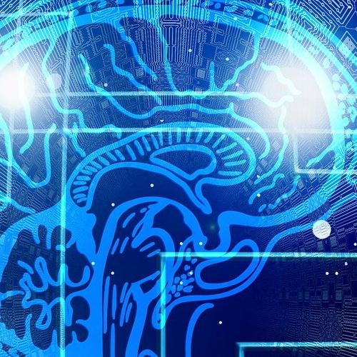 L'innovazione mette a rischio le professioni intellettuali: come intervenire?