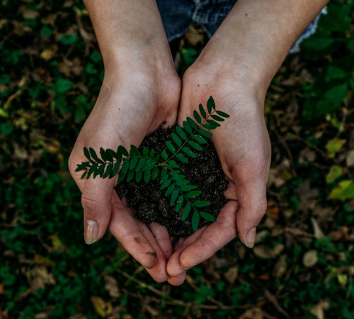 Innovazione e sostenibilità: ecco il futuro